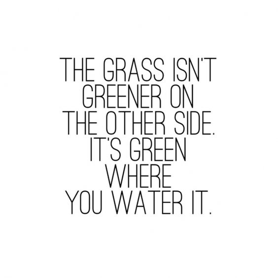Beautiful Quotes The grass isn't greener on the other side. It's greener where you water it.