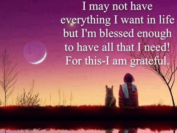 Quote about gratitude I may not have everything I want in life but I'm blessed enough to have all that I need!
