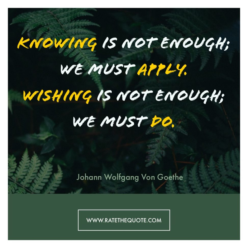 Knowing Is Not Enough; We Must Apply. Wishing Is Not Enough; We Must Do. – Johann Wolfgang Von Goethe
