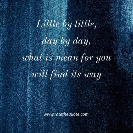 Little by little, day by day, what is mean for you will find its way
