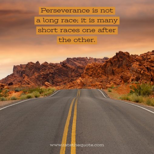 Perseverance is not a long race; it is many short races one after the other. Walter Elliot