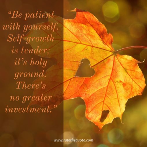 """""""Be patient with yourself. Self-growth is tender; it's holy ground. There's no greater investment."""" -Stephen Covey"""