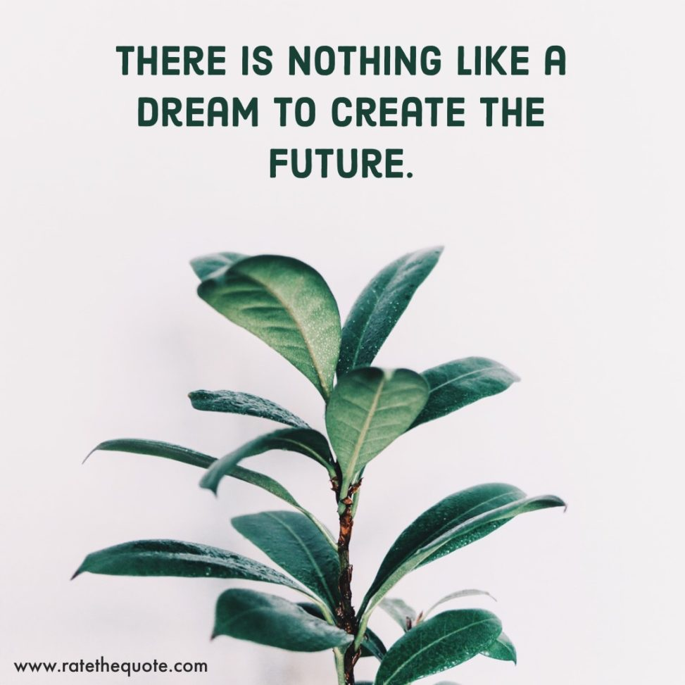 There is nothing like a dream to create the future. Victor Hugo