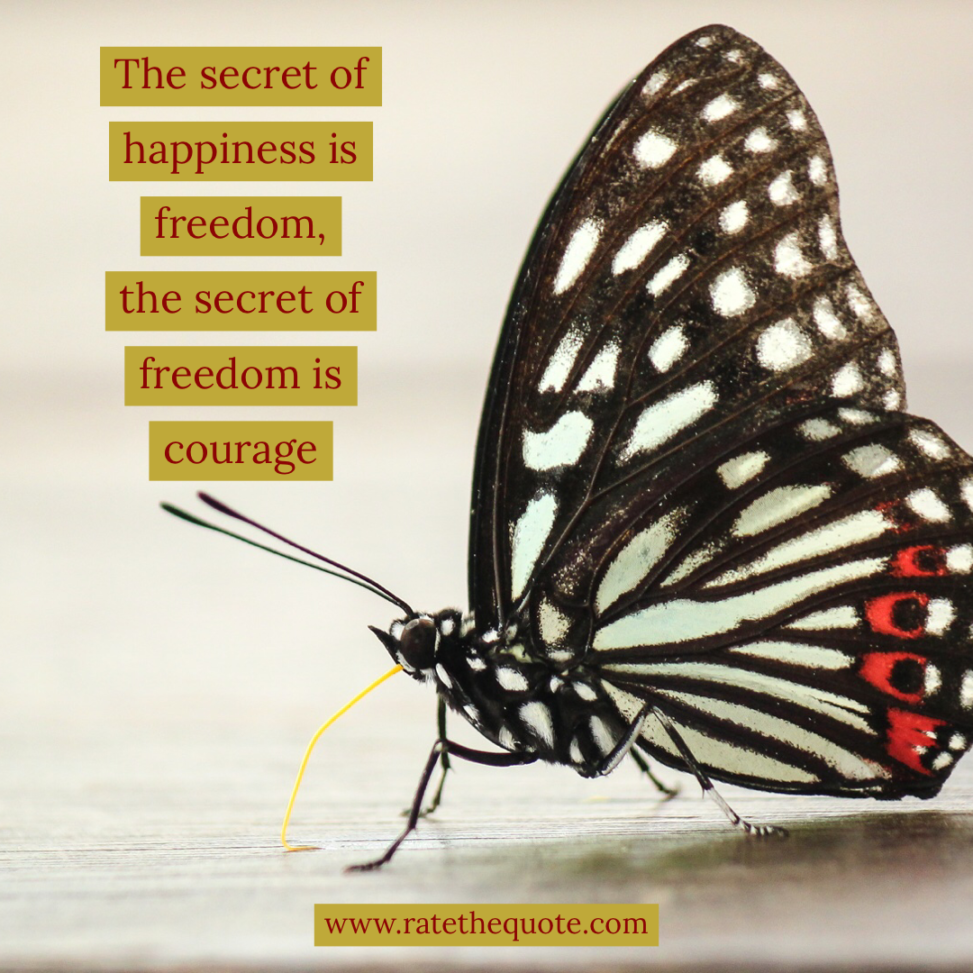 """""""The secret of happiness is freedom, the secret of freedom is courage."""" – Carrie Jones"""